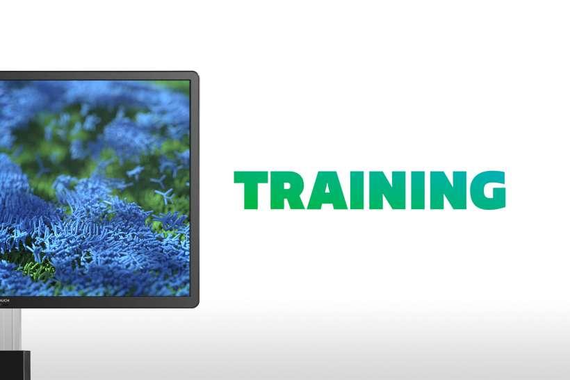 Training-coral-gradient-tekst
